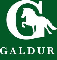 Galdur Reitsport-Logo